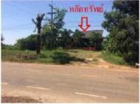 ที่ดินพร้อมสิ่งปลูกสร้างหลุดจำนอง ธ.ธนาคารกรุงไทย นครราชสีมา ครบุรี โคกกระชาย